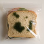 anti_theft_sandwich_bags